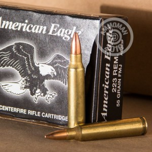 Picture of .223 FEDERAL AMERICAN EAGLE 55 GRAIN FMJ (20 Rounds)