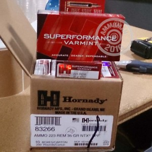 Picture of 223 REMINGTON HORNADY SUPERFORMANCE 35 GRain NTX (200 ROUNDS)