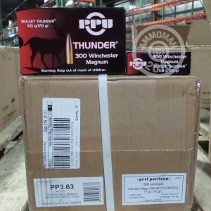 Picture of 300 WIN MAG PRVI PARTIZAN BULLET THUNDER 170 GRAIN PSP (20 ROUNDS)