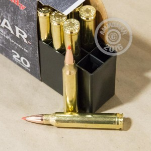 Picture of 300 WIN MAG HORNADY FULL BOAR GMX 165 GRAIN GMX (20 ROUNDS)