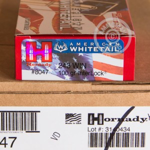 Picture of 243 WIN HORNADY AMERICAN WHITETAIL 100 GRAIN SP (20 ROUNDS)