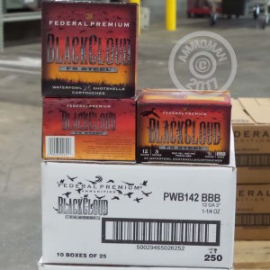 "Picture of 12 GAUGE FEDERAL PREMIUM BLACK CLOUD 3"" 1-1/4 OZ  BBB SHOT (250 ROUNDS)"