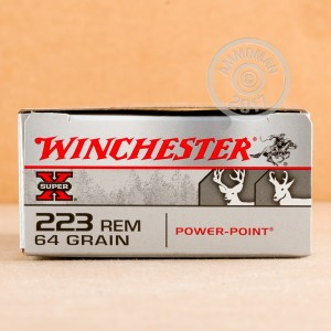 Image of 223 Remington ammo by Winchester that's ideal for hunting varmint sized game, hunting wild pigs, whitetail hunting.