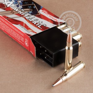 Picture of 308 WIN HORNADY AMERICAN WHITETAIL 165 GRAIN INTERLOCK SPIRE POINT (20 ROUNDS)