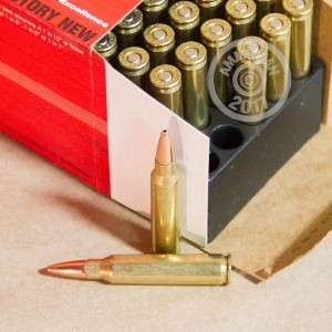 Picture of 223 REMINGTON BLACK HILLS 75 GRAIN MATCH HP (50 ROUNDS)