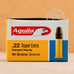 Photograph of .22 Long Rifle ammo with Lead Round Nose (LRN) ideal for hunting varmint sized game, training at the range.