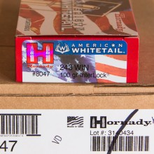 243 WIN HORNADY AMERICAN WHITETAIL 100 GRAIN SP (20 ROUNDS)