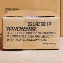 22 LR WINCHESTER 36 GRAIN CPHP (555 Rounds)