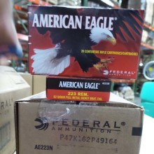 223 REMINGTON FEDERAL AMERICAN EAGLE 62 GRAIN FMJ (20 ROUNDS)