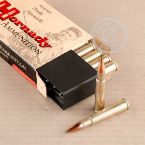 Image of 303 British ammo by Hornady that's ideal for whitetail hunting.
