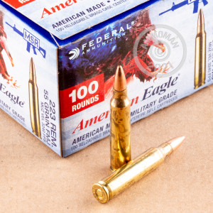 Photograph showing detail of 223 REM FEDERAL AMERICAN EAGLE 55 GRAIN FMJBT (1000 ROUNDS)