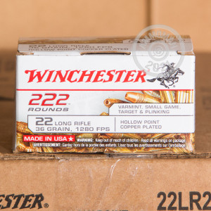 Image of bulk .22 Long Rifle rimfire ammo at AmmoMan.com that's perfect for hunting varmint sized game, training at the range.
