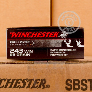 A photograph of 20 rounds of 95 grain 243 Winchester ammo with a Polymer Tipped bullet for sale.