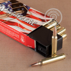 Photo of 300 Winchester Magnum Spire Point ammo by Hornady for sale.