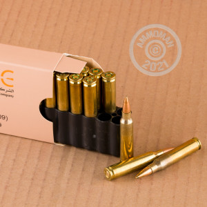 A photograph of 800 rounds of 62 grain 5.56x45mm ammo with a Penetrator bullet for sale.