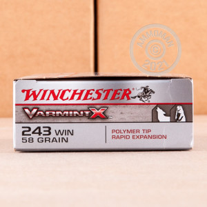 A photograph of 20 rounds of 58 Grain 243 Winchester ammo with a Polymer Tipped bullet for sale.