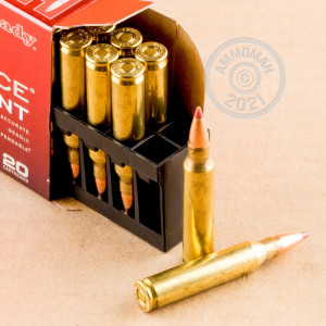 Photograph showing detail of 223 REMINGTON HORNADY SUPERFORMANCE 35 GRain NTX (200 ROUNDS)