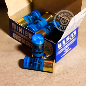ammo made by NobelSport with a 2-1/4