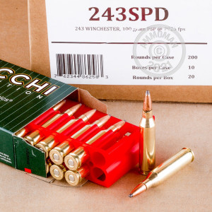 Photo of 243 Winchester Pointed Soft-Point (PSP) ammo by Fiocchi for sale.