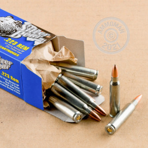 Image of 223 Remington ammo by Silver Bear that's ideal for home protection, training at the range.