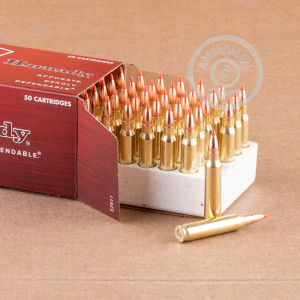 Photograph showing detail of 223 REMINGTON HORNADY 55 GRAIN VMAX (50 ROUNDS)