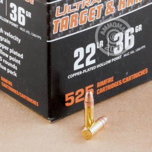 rounds of .22 Long Rifle ammo with copper plated hollow point bullets made by Federal.