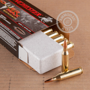 Image of 243 Winchester rifle ammunition at AmmoMan.com.