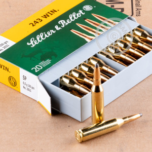 An image of 243 Winchester ammo made by Sellier & Bellot at AmmoMan.com.