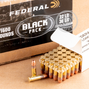 A photograph of 1600 rounds of 36 grain .22 Long Rifle ammo with a copper plated hollow point bullet for sale.