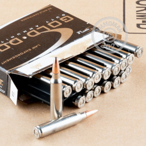 Image of 223 Remington ammo by Speer that's ideal for home protection.