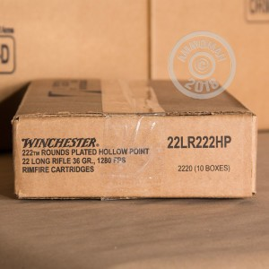 Image of bulk .22 Long Rifle ammo by Winchester that's ideal for hunting varmint sized game.