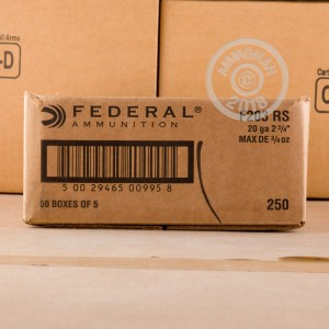 Great ammo for hunting, these Federal rounds are for sale now at AmmoMan.com.