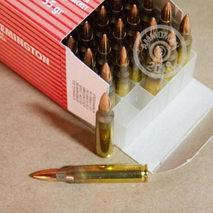 An image of 223 Remington ammo made by Fiocchi at AmmoMan.com.