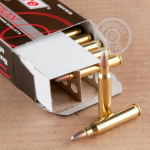 A photograph of 20 rounds of 45 grain 223 Remington ammo with a frangible bullet for sale.