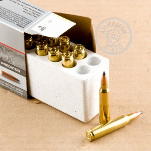 A photograph of 20 rounds of 40 grain 223 Remington ammo with a Polymer Tipped bullet for sale.