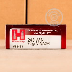 A photograph of 20 rounds of 75 grain 243 Winchester ammo with a V-MAX bullet for sale.