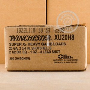 Photograph of Winchester 20 Gauge #8 shot for sale at AmmoMan.com