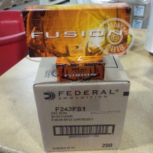 A photograph of 200 rounds of 95 grain 243 Winchester ammo with a Fusion bullet for sale.