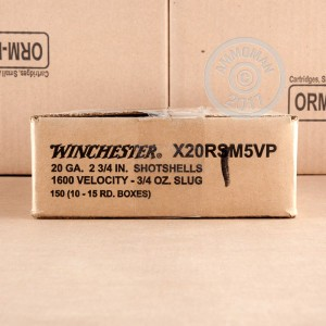 Photo showing 15 rounds of 20 Gauge ammo made by Winchester.