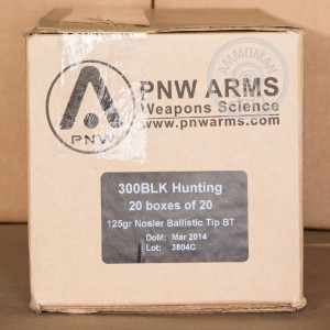 A photograph of 20 rounds of 125 grain 300 AAC Blackout ammo with a Nosler Ballistic Tip bullet for sale.