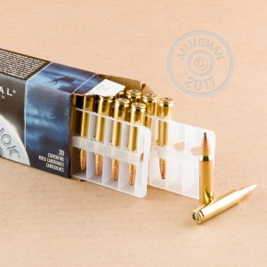 A photograph detailing the 223 Remington ammo with soft point bullets made by Federal.