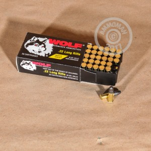 rounds of .22 Long Rifle ammo with Lead Round Nose (LRN) bullets made by Wolf.
