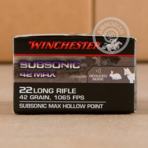 rounds of .22 Long Rifle ammo with Lead Hollow Point (LHP) bullets made by Winchester.