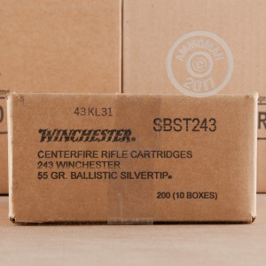 Image of 243 Winchester ammo by Winchester that's ideal for hunting wild pigs, whitetail hunting.