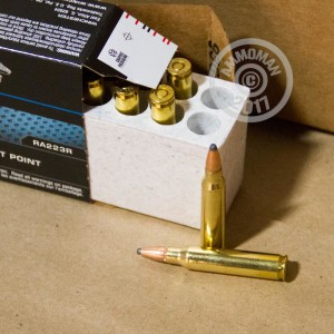 A photograph detailing the 223 Remington ammo with Pointed Soft-Point (PSP) bullets made by Winchester.