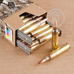 A photograph detailing the 5.56x45mm ammo with FMJ-BT bullets made by Federal.