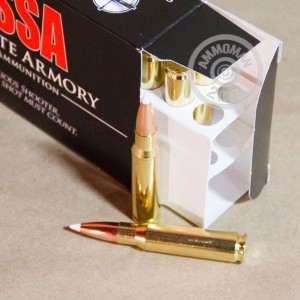 Image detailing the brass case on the Silver State Armory ammunition.
