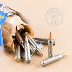 A photograph detailing the 223 Remington ammo with FMJ bullets made by Silver Bear.