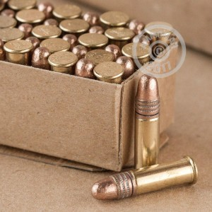 rounds of .22 Long Rifle ammo with Lead Round Nose (LRN) bullets made by Winchester.