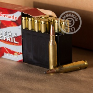 Image of 243 Winchester ammo by Hornady that's ideal for whitetail hunting.